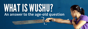 What is wushu?